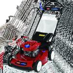 Toro Recycler Rasenmäher 20956